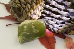 Kottar med stenen royaltyfri foto