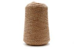 Kotte av silke Fotografering för Bildbyråer