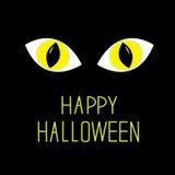 Kotów oczy w ciemnej nocy. Szczęśliwa Halloween karta. Obraz Royalty Free