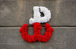 Kotwica - the emblem of the Polish resistance against German occupation, made of flowers on a concrete wall Stock Image