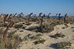 Kotwicowy cmentarz przy Praia robi Barril Obraz Royalty Free