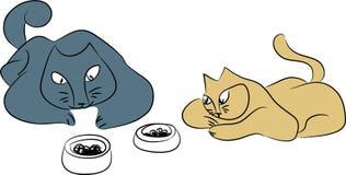 Koty czekają posiłek Fotografia Royalty Free