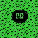 koty deseniują bezszwowego Fotografia Stock