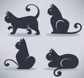 Koty inkasowi Fotografia Royalty Free