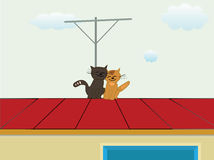 Koty na dachu Obraz Stock