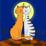 Koty na dachu ilustracji