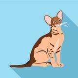 Koty różni trakeny z długim cieniem Zdjęcie Stock