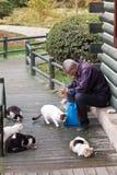 koty target2038_1_ parka starego bezpański mężczyzna Zdjęcia Stock
