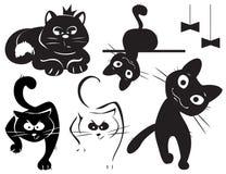 koty ustawiający Fotografia Royalty Free