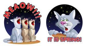 Koty wita wiosnę royalty ilustracja