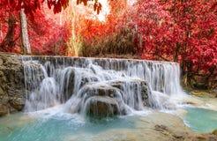 Kouangxi waterfall at Luang prabang in Laos Stock Photography