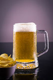 Koud bier met spaanders Royalty-vrije Stock Foto's