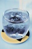 Koud Glas met Ijswater royalty-vrije stock afbeelding
