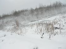 Koud sneeuwmeer stock afbeelding