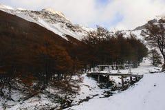 Koude bergen Stock Foto