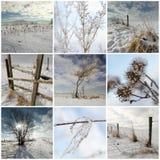 Koude de wintercollage Royalty-vrije Stock Fotografie