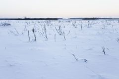 Koude de winterdag Stock Fotografie