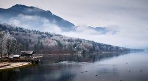 Koude de winterochtend bij het Bohinj-meer in het nationale park van Triglav stock afbeeldingen