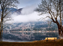 Koude de winterochtend bij het Bohinj-meer in het nationale park van Triglav royalty-vrije stock fotografie