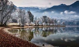 Koude de winterochtend bij het Bohinj-meer in het nationale park van Triglav stock fotografie