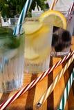 Koude dranken met citroen, munt, braambes en gestreept stro Stock Afbeeldingen