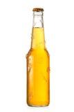 Koude fles bier met ijs Stock Fotografie
