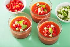 Koude gazpachosoep in glazen en ingrediënten Royalty-vrije Stock Afbeelding