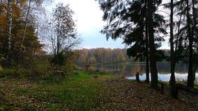 Koude hemel van de herfst Royalty-vrije Stock Afbeeldingen