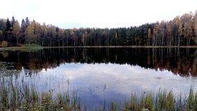 Koude hemel van de herfst Royalty-vrije Stock Afbeelding