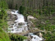 Koude kreekwatervallen, Hoge Tatras Stock Afbeeldingen