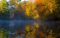 Koude maar mooie de herfstochtend Stock Foto
