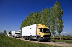 Koude opslagvrachtwagens in de dorpsweg royalty-vrije stock fotografie
