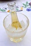 Koude pruimbrandewijn of schnapps Stock Foto