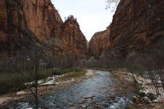 Koude Rivier door Zion National Park Royalty-vrije Stock Fotografie
