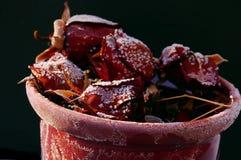Koude rozen Stock Foto