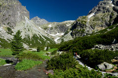 Koude vallei in Hoge Tatra Royalty-vrije Stock Foto's