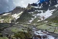 Koude vallei in Hoge Tatra Stock Foto's