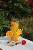 Koude verse eigengemaakte limonade Stock Fotografie