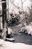 Koude, winterse gangen buiten in de sneeuw! royalty-vrije stock afbeeldingen