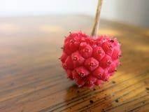 Kousa Dogwood heart. Kousa dogwood fruit resembling a heart, on a wood table Royalty Free Stock Photo