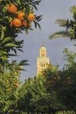 Koutoubia清真寺尖塔塔在马拉喀什摩洛哥 库存照片