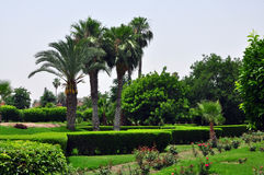 Koutoubia Gardens Royalty Free Stock Photo
