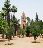 Koutoubia Mosque garden Royalty Free Stock Photo