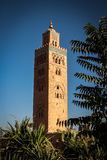 Koutoubia mosque marrakech. Famous mosque near the Jemna el Fna in Marrakech Royalty Free Stock Photo