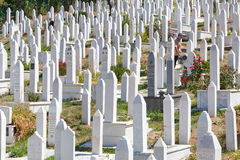 Kovaci cemetery Royalty Free Stock Images