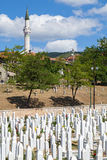 Kovaci cemetery Royalty Free Stock Photos
