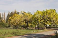 Koviljaca Spa in Loznica Royalty-vrije Stock Afbeeldingen