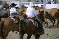 kowbojów. Zdjęcia Royalty Free