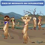 Kowbojów meerkats na strażniku w dzikim zachodzie royalty ilustracja