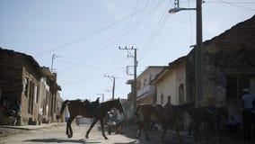 Kowboj z koniami, iść przez drogi zbiory wideo